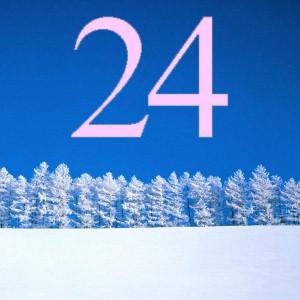 24 v2